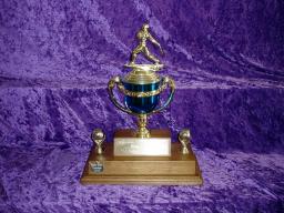 Trophies 1